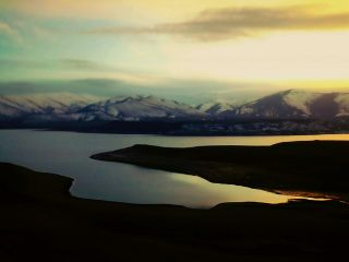 nature naturephotography naturelovers winter snow freetoedit