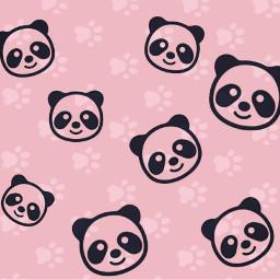 freetoedit pastelgrunge pastel panda cute
