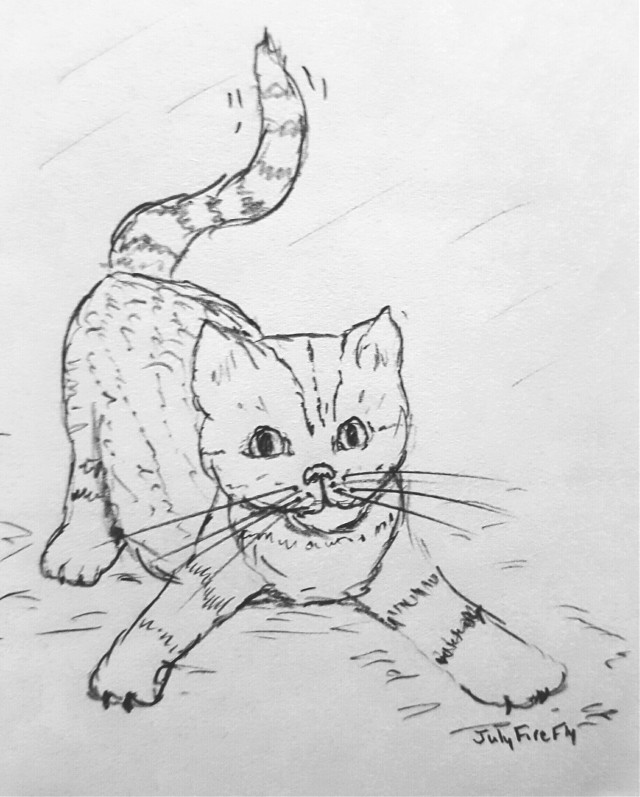 Ready to play! #kitty #sketch, #cat #sketchbook, #FreeToEdit
