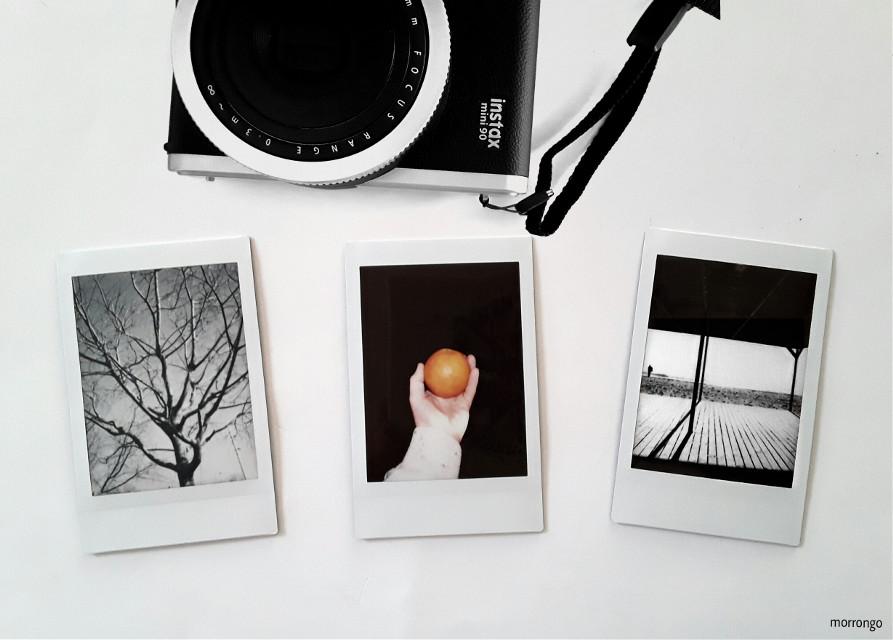 #FreeToEdit  #instantpic  #photography  #myart  #instantcamera
