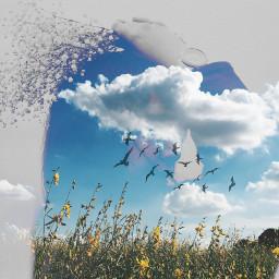 freetoedit edited doubleexposure silhouettestencil clouds