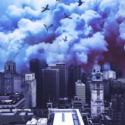 surreal cityscape parrots dreamscape smog ecmybestedit freetoedit