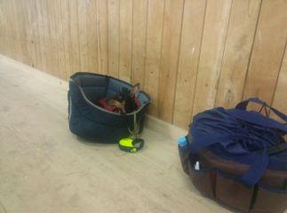 hund stall reiten pferde freetoedit
