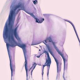 freetoedit unicornremix unicornday unicornfever